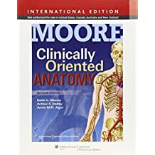 Clinically Oriented Anatomy. Keith L. Moore, Arthur F. Dalley II, Anne M.R. Agur 7th revised internat edition by Moore, Keith L. (2013) Taschenbuch