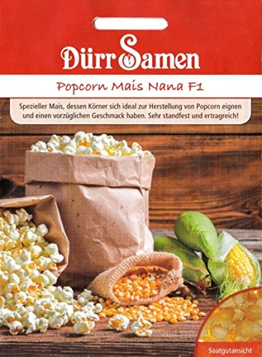 Popcorn Mais, Nana, Zea mays, ca. 25 Samen