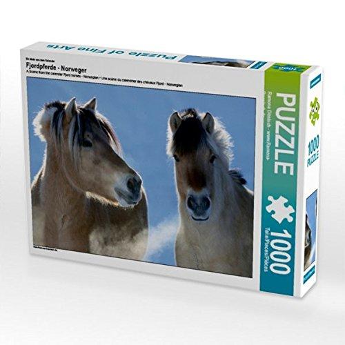 Ein Motiv aus dem Kalender Fjordpferde - Norweger 1000 Teile Puzzle quer (CALVENDO Tiere)