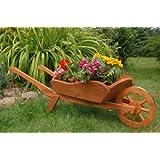 Brouette decorative jardin - Echelle decorative pour plantes ...