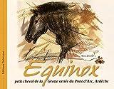 Equinox, petit cheval de la grotte ornée du Pont d'Arc, Ardèche