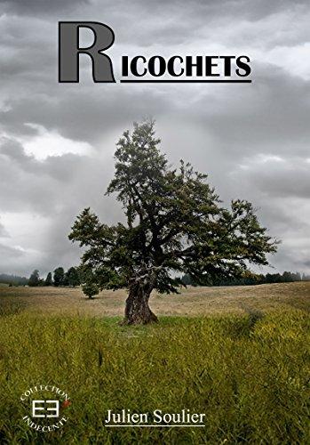 Ricochets (Indécente) par Julien Soulier
