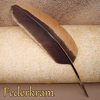 Rot Braun Feder Schreibfeder Zeichenfeder Federkiel Kalligraphie Stift