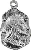 F&A - Medalla Rostro, diseño de Cristo, niquelada, 1,9 cm