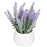 Garden weiß Keramik Tischplatte Künstliche Topfpflanzen/Moderne Deko Fake Lavendel Blumen–MyGift