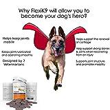 Gelenk Ergänzungsfutter für Hunde | Gegen Arthritisschmerzen, Hüftprobleme, Rheuma, Arthrose & Bewegungsprobleme | Gelenkschutz für Ihren Hund |120 Extra Starke & Kaubare Gelenketabletten - 6