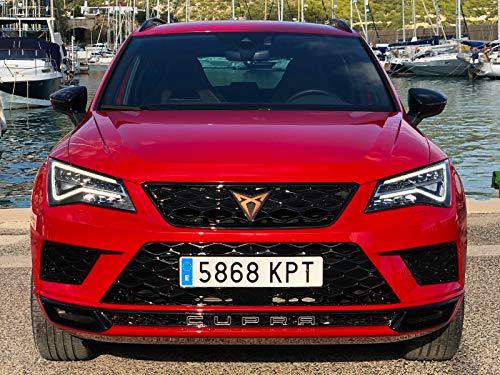 Cupra Ateca 2.0 TSI - Das 300 PS Sport SUV im Test