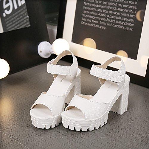 im sommer, mit frauen - sandalen, high heels, wasserfeste schuhe, aufstehen, zehen, weißen fisch, fisch im mund, runden kopf schuhe weiße