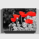 Big Box Art Canvas Print 24 x 16 inch (60 x 40 cm) Red Poppy Field Flowers (7) - Canvas Wall Art Picture Ready to Hang - Free Delivery