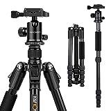 K&F Concept TM2515B Reisestativ Dreibeinstativ Aluminium Kamerastativ für Canon Nikon mit Kugelkopf Einbeinsativ-Funktion Schnellwechselplatte und Stativtasche