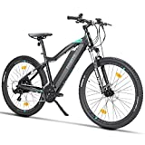 E-bikes - Best Reviews Guide