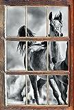 Stil.Zeit Monocrome, Western Pferde in Wüste mit Fohlen Fenster im 3D-Look, Wand- oder Türaufkleber Format: 62x42cm, Wandsticker, Wandtattoo, Wanddekoration