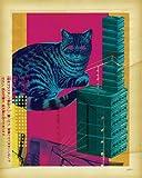 Wheatpaste Art colectiva Arquitectura de engaño Lienzo Arte por Lucas Irwin, 24por 76,2cm