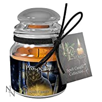 Weird Or Wonderful Spell Candle - Prosperity - Jasmine by Lisa Parker - Burn Time 15 Hours - Nemesis Now Gothic Gift Fantasy Witch Magic Magical Mystical Spiritual Wicca Wiccan Cat