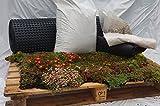 Greenroof Dachbegrünung Komplettpaket mit vorkultivierter Sedummatte für individuelle Dachgröße, (Produktlänge x Produktbreite x Produkthöhe in M)- 10x10x0.1