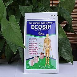 10 ps/lote Vietn ECOSIP Tratamento de Osteoartrite Osso Hiperplasia Espondilose Periartrite Rheumatalgia Aliviar A Dor Remendo