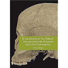 """El yacimiento de """"La Dehesa"""" Una aproximación al mundo funerario Protocogotas"""