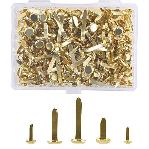 HUAESIN 500 Stück Musterbeutelklammern Rundkopf Metall Musterklammern Papierverschlüsse Mini Brads mit Aufbewahrungsbox für Scrapbooking Papier Basteln DIY Kunsthandwerk 5 Größe Gold