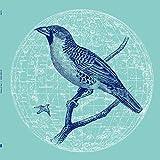 Peace Bird Ep [Vinyl Maxi-Single]