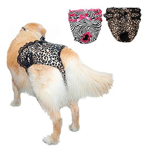 Pee Wee Hose (s-lifeeling Extra große Sexy Female Hund Windeln Große Pet Hose waschbar)