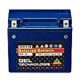 Panther Motorradbatterie Gel 12V 10Ah 51012 YTX12-BS