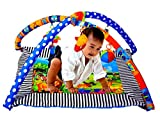 #4: Sunshine Baby's Playmat Gym With Toys, Made of Non Toxic Materials