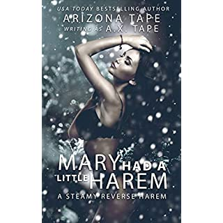 Mary Had a Little Harem: A Steamy Standalone Contemporary Reverse Harem (English Edition)