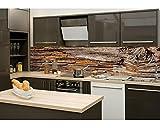 Küchenrückwand Folie selbstklebend BAUMRINDE 260 x 60 cm | Klebefolie - Dekofolie - Spritzchutz für Küche | PREMIUM QUALITÄT