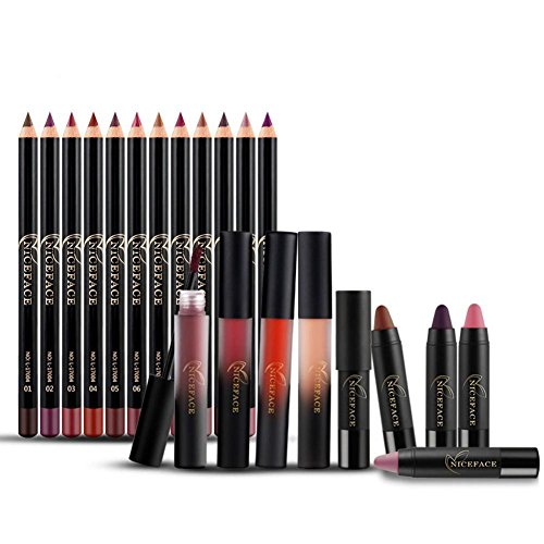 GSTONE 20 PCs / Set liquide lèvres stick professionnel de Noël cadeau Set Lip Liner Lip Gloss rouge à lèvres Lip Set naturel Make up set