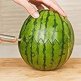 Pratique Acier Inoxydable Cuisine Fruit Légume Pastèque Sculpture Coupeur Cuillère