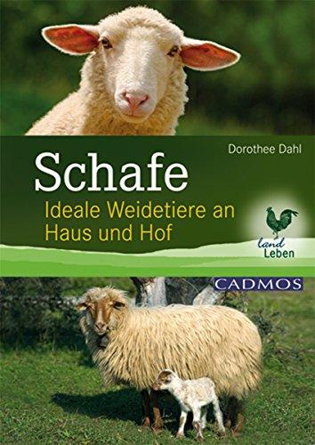 Schafe: Ideale Weidetiere an Haus und Hof (Landleben) -