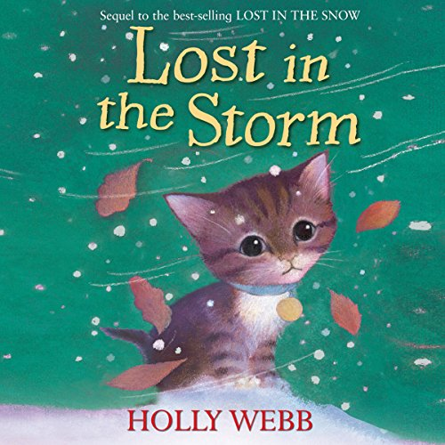 Lost in the Storm  Audiolibri