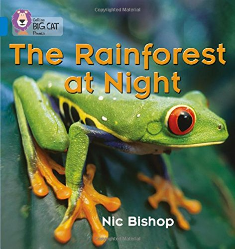 The Rainforest at Night: Band 04/Blue (Collins Big Cat Phonics): Blue/Band 4
