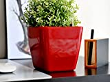 CatMotion Selbstbewässernder Design-Blumentopf mit Wasserstandsanzeige (Water Level Indicator) für Alle Pflanzenarten, Kräuter, Orchideen, Blumen, Einfaches Züchten, GreenSun 13 x 13cm, Rot