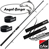 DAM Camaro Aal 60 2,70m 30-60g Aalruten Steckrute mit Angel Berger Rutenband