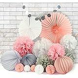 28 Flores Pompones de Papel de Seda Bola Nido de Abeja Fan de Papel Linternas de Papel Guirnalda Decoraciones de Fiesta Boda Baby Shower Cumpleanos – Rosa Blanco Gris