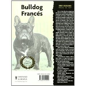 Bulldog Francés (Excellence-Raza especial)