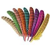 ERGEOB® Natur Dekoration Hahnfeder fasan Feder 50 stück, 10-15cm läng, Ideal für Kostüme, Hüte, basteln, Zuhause Dekor, DIY usw. -
