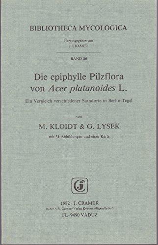 Epiphylle Pilzfora von Acer Platanoides