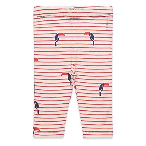 ESPRIT KIDS Baby-Mädchen Leggings, Weiß (White 010), (Herstellergröße: 74)