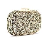 Anya Hindmarch Glitter Clutch Marano Bag RRP 350.00