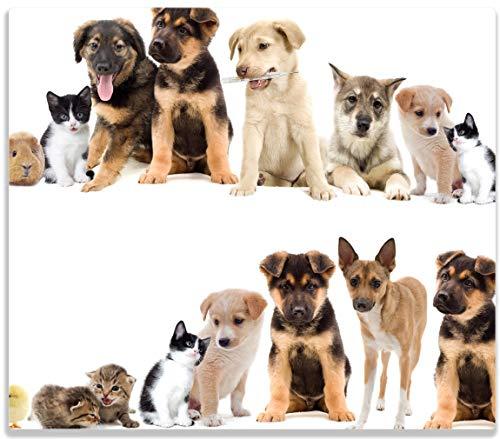(Wallario Herdabdeckplatte/Spritzschutz aus Glas, 1-teilig, 60x52cm, für Ceran- und Induktionsherde, Süße Haustiere - Katzen, Hunde, Hamster, Küken)