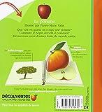 Image de La pomme et d'autres fruits