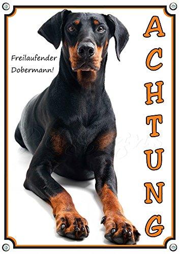 Petsigns Hundeschild Dobermann - ACHTUNG! Warnschild Türschild aus Metall, DIN A4