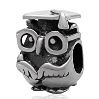 Hoobeads Wise Owl .925 Sterling Silver Charms Bead for European Chain Bracelet