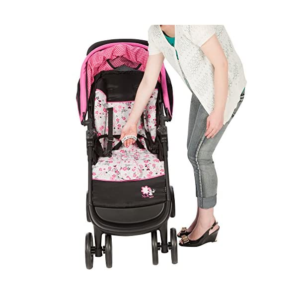 AmbleÈ Travel System (IC224)- Garden Delight (Minnie) Dorel  4