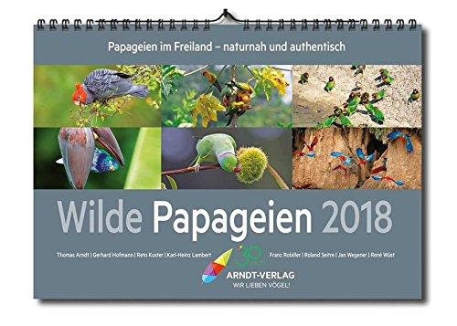 Kalender ,Wilde Papageien\' 2018 Din A3 quer: Papageien im Freiland - naturnah und authentisch