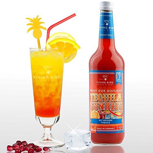 Tequila Sunrise 28{a8fa831ca6445679eb77488424e87546004ebbc3354d31762cf0c7d35f96376a} Vol. - PreMix für 17 alkoholische Cocktails – Flasche 0,7 l mit allen Zutaten - Einfach mit Orangensaft & Eis mixen, fertig
