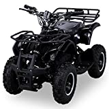 NEU Elektro Kinder Miniquad TORINO 800 Watt ATV Pocket Quad