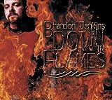 Songtexte von Brandon Jenkins - Down In Flames